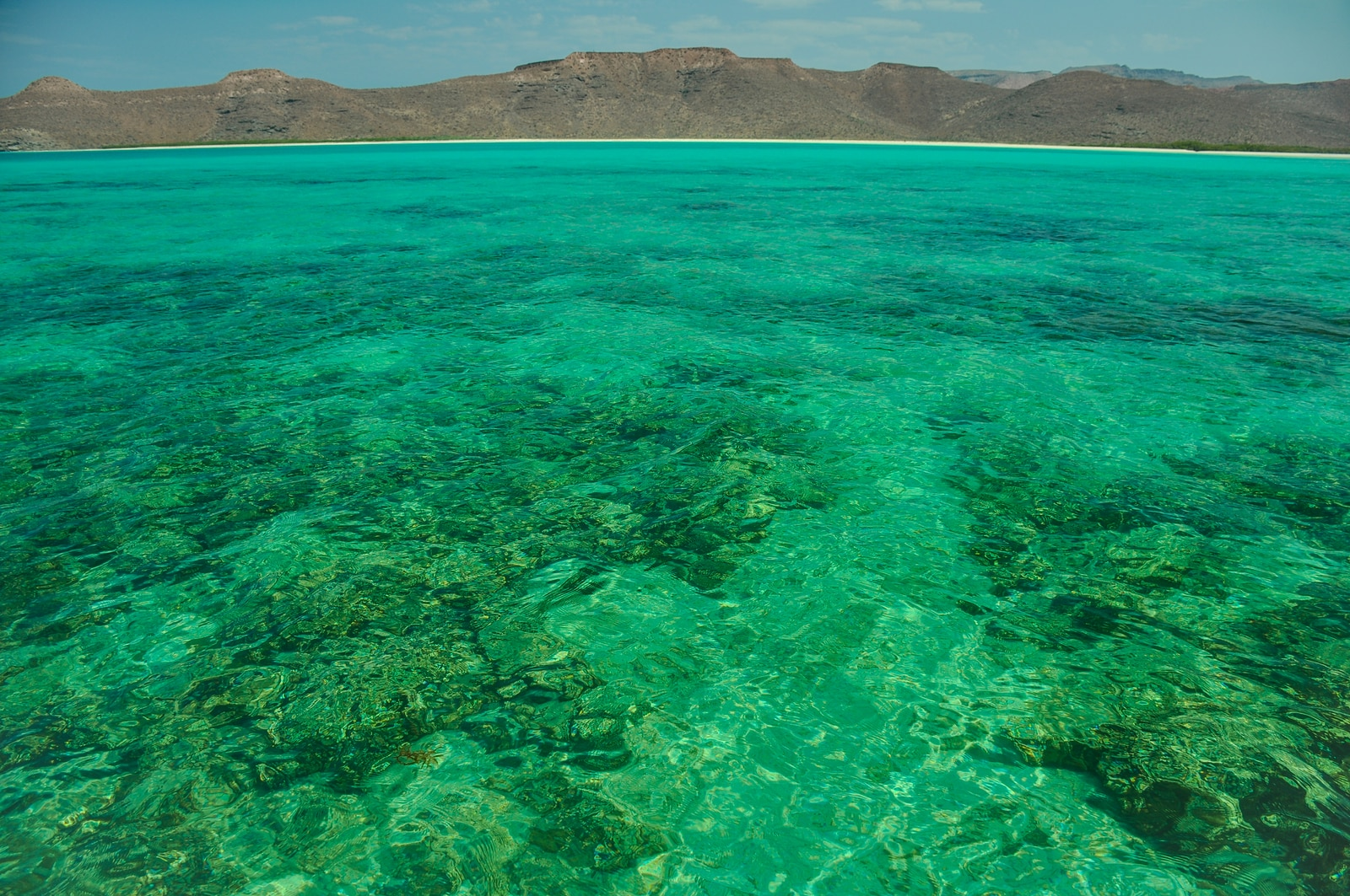 Baja California and its Sea of Cortez